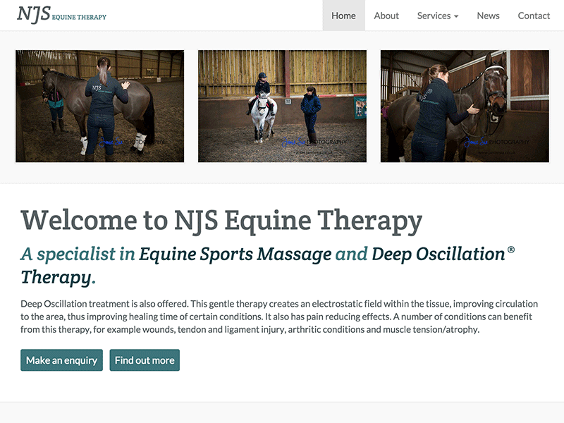 Screenshot of NJS Equine Therapy home page design.